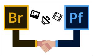 Adobe Portfolio asociado